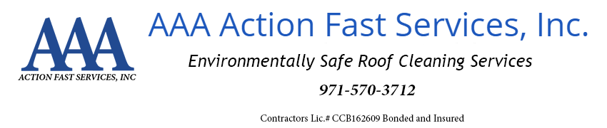 AAA Action Fast Services, Inc.